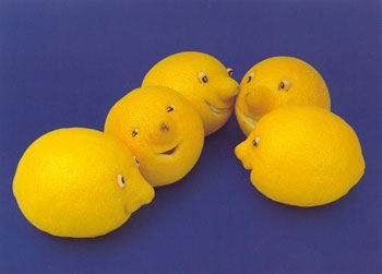 lemons vegetable art